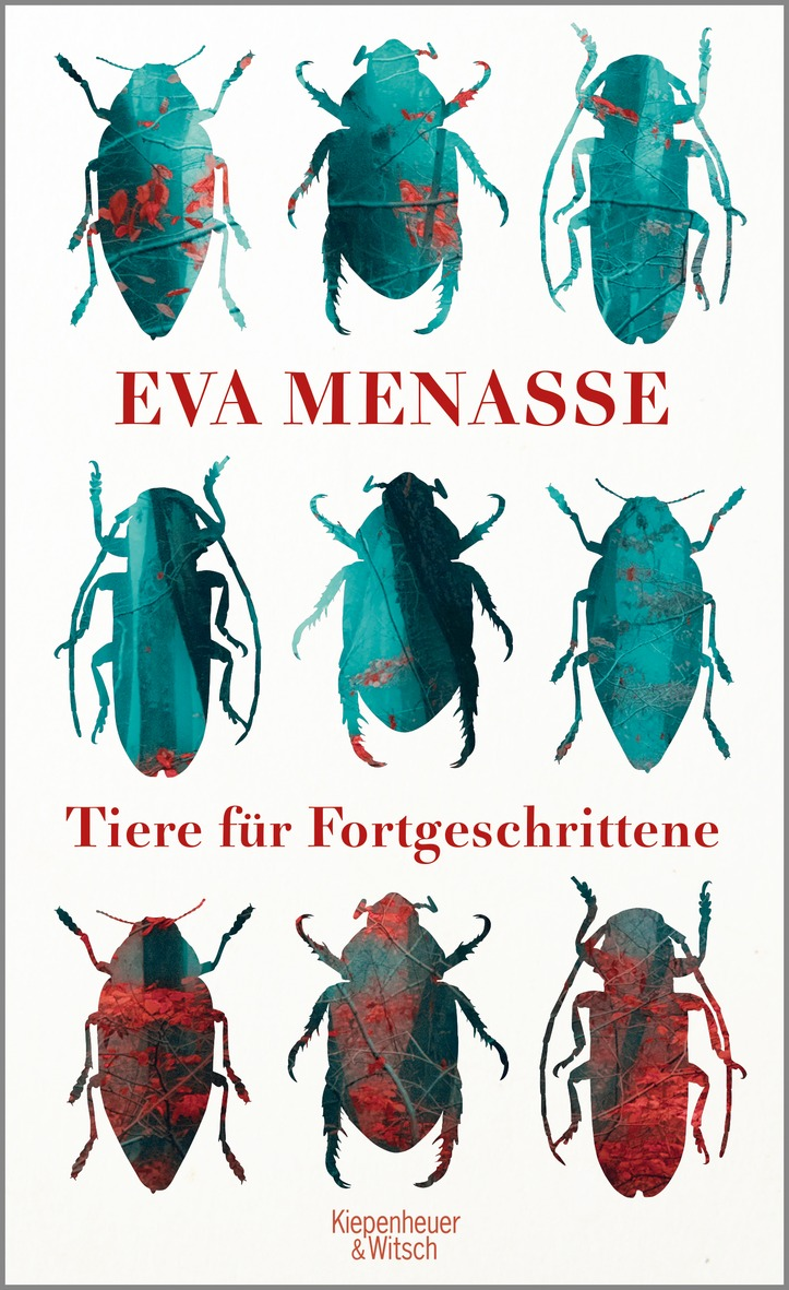 Menasse - cover
