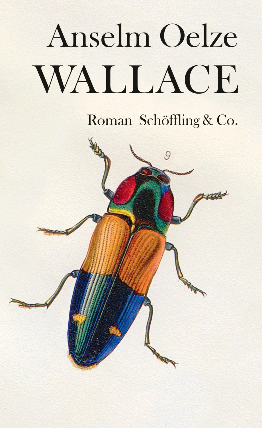 Wallace Cover
