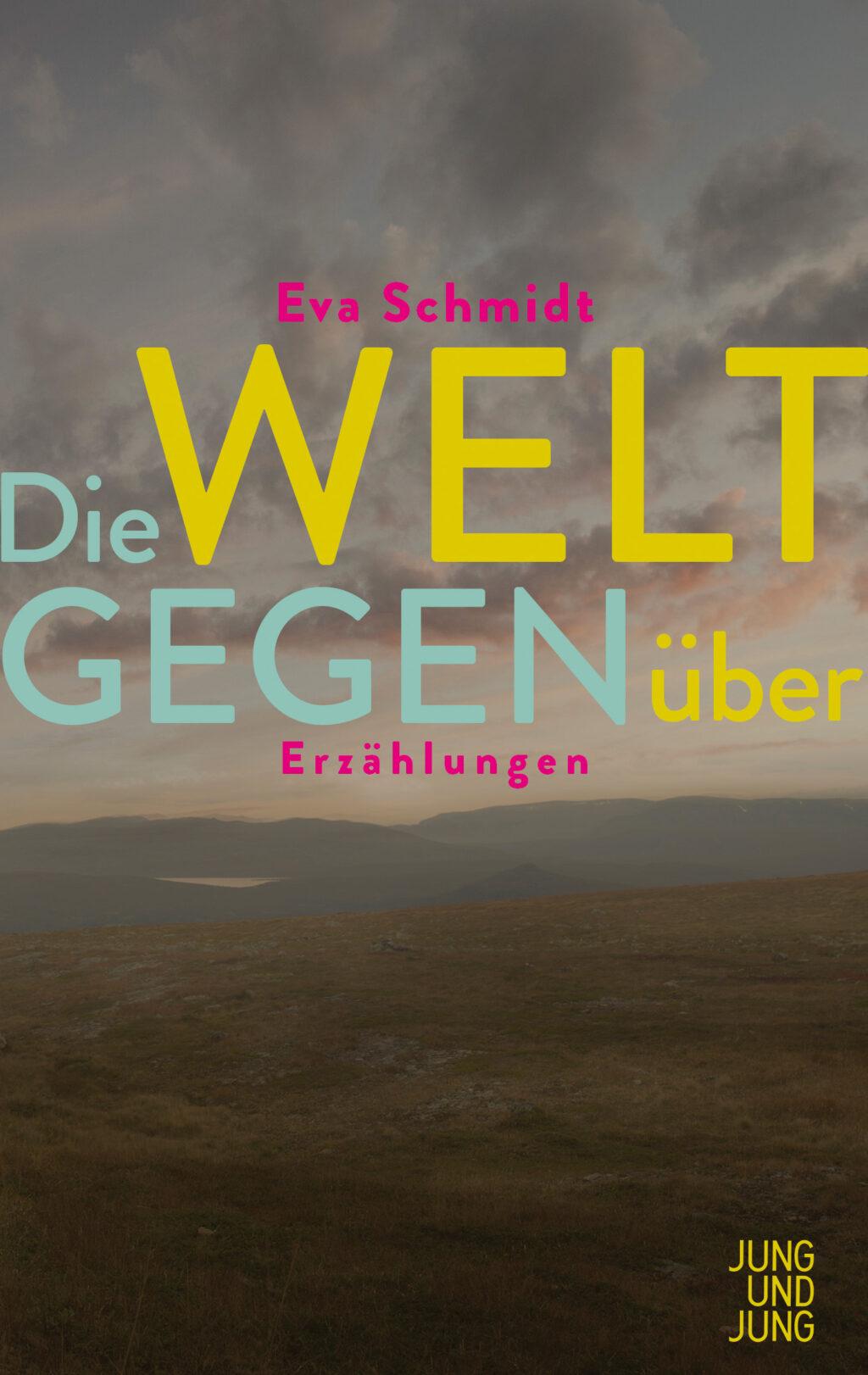 Schmidt cover
